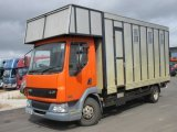 2006 DAF LF Professional transport truck. Stalled for 5.. Recent  refurbishment in the horse area